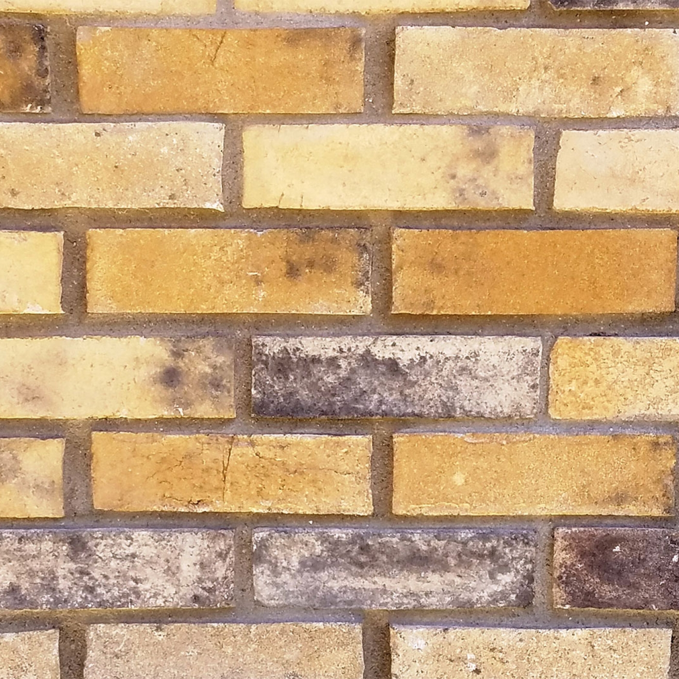 Old Tequila Clean Brick Stone Veneer from Environmental StoneWorks